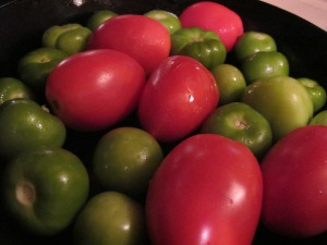 3a-tomatoes-and-tomatillos.jpg